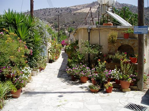 The old and narrow streets in Kalavasos are often decorated with flowers by local women of Cyprus